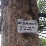 Làm biển treo cây xanh chung cư, công viên giá rẻ uy tín